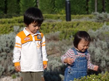山本新池公園.JPG