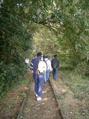 森の中を線路は続く
