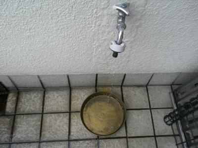 水飲み場.jpg