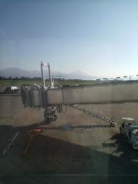 空港の窓から慌てて撮ったの!
