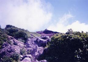 遠い山頂.jpg