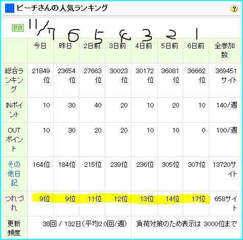 ピーチ姫ブログランキンング.11.07.JPG