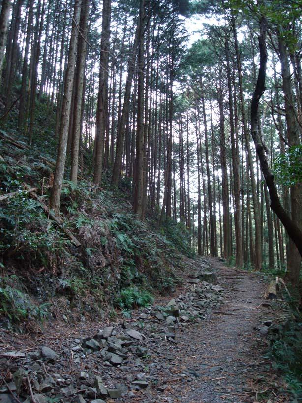 熊野古道04
